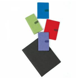 #9100Q4, Texas Academic Display Assorted Colors 18 x 5 x 13, 2021/2022